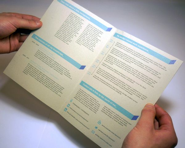 168 best Creative CV Inspiration images on Pinterest Creative cv - examples of cv