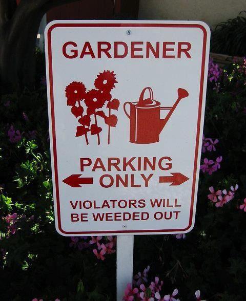 Garden humor                                                                                                                                                                                 More