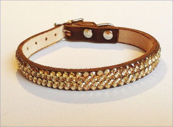 Brown Gold Pet Collar Leather 10-12 Super Bling Ore
