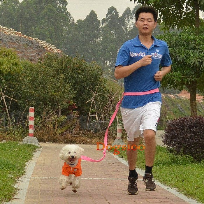 6 Colors Strong Nylon Hand Free Dog Leash Pet leads For Running Jogging Hiking Walking