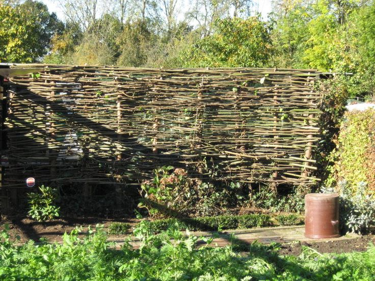 Epic Frage zu Flechtzaun aus Hasel und Weide Seite Gartenpraxis Mein sch ner Garten