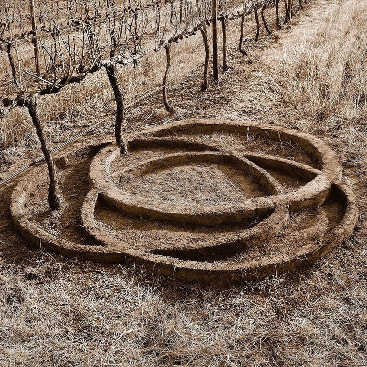 The Naude logo for @iannaude7 recreated by land artist @strijdomvandermerwe in the vineyard from which the grapes are sourced. #haumannsmal #logodesign #stellenbosch #strijdomvandermerwe #adorowine #landart #logo