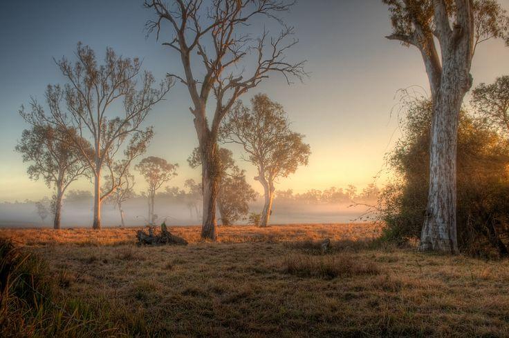 Tamborine Queensland  Sunrise HDR Tamborine Queensland