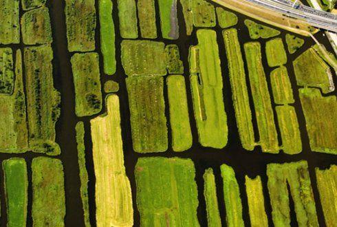 Dit is een laagveenlandschap dat is gemaakt doordat Nederland de Delta is van de Rijn de Maas etc.   Doordat er allemaal planten naast die rivieren gingen groeien en daarna weer stierven, gingen al die planten op elkaar  liggen laagje over laagje.   Waardoor je veen krijgt wat goed brand van Casper.