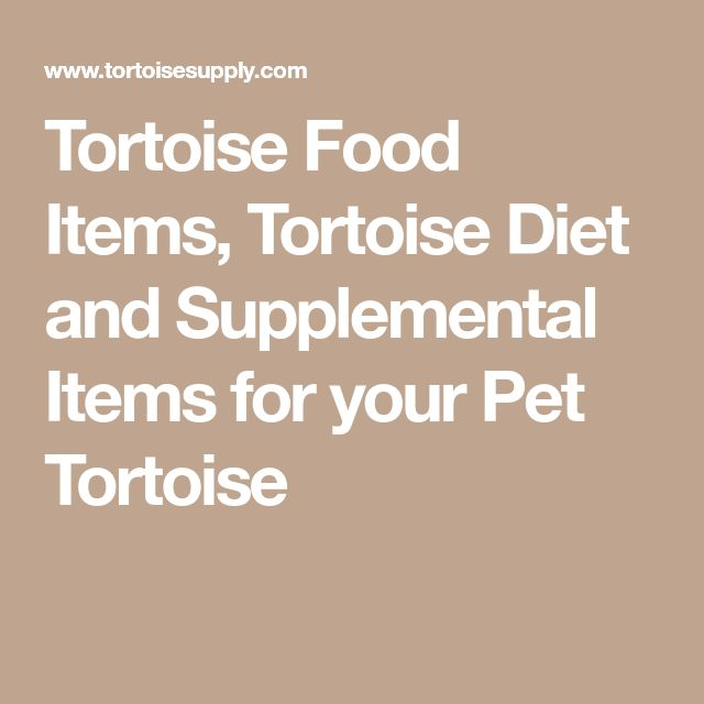 Tortoise Food Items, Tortoise Diet and Supplemental Items for your Pet Tortoise