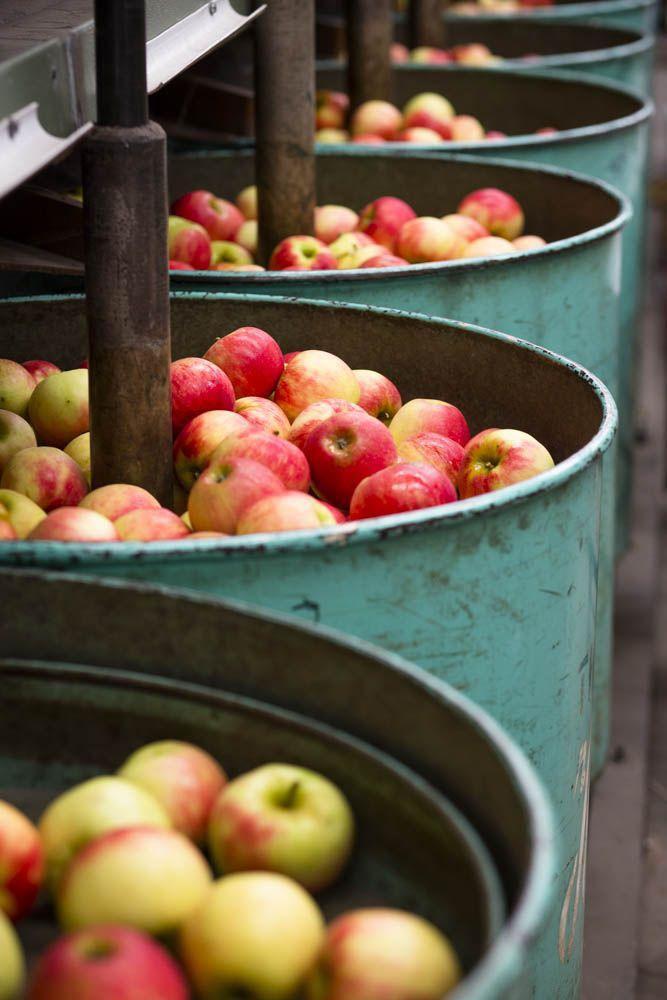 Wine Food Farmgate, Mock Red Hill, Mornington Peninsula