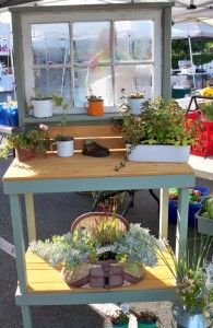 Check the age of the recycled material you may be using as a planter especially if it's sourced from a house demolition. More tips @ themicrogardener.com