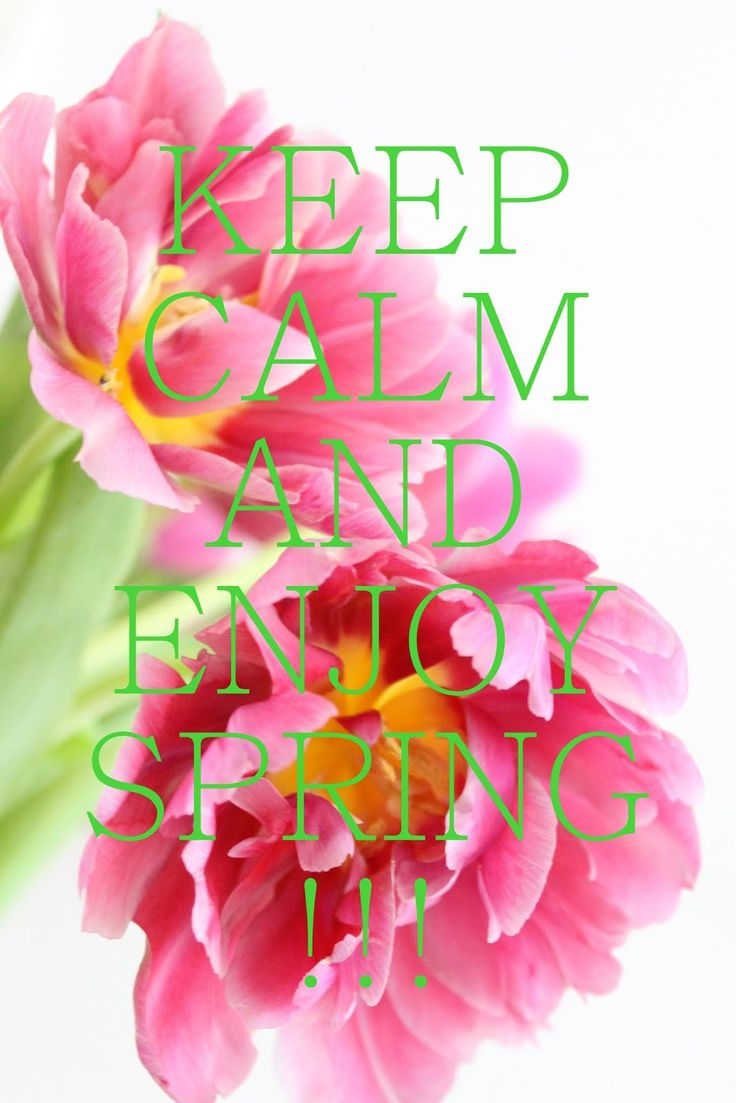 Keep Calm and Enjoy Spring!
