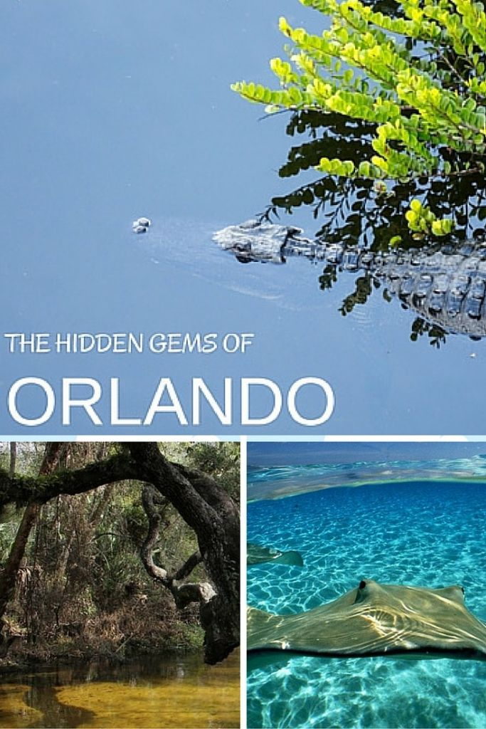 The hidden gems of things to do in Orlando   With so many attractions in Orlando that have little to do with Mickey where do you even begin? Here are 10 insider tips of hidden gems.