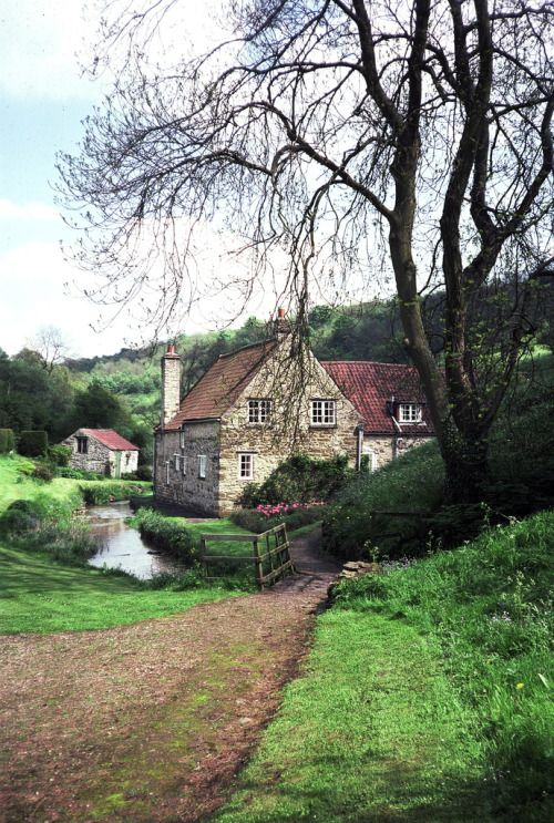 """bellasecretgarden:  Caydale Mill from across the mill stream. by Isabella""""Caydale is one of those secret little dales that reward a walker who keeps off the beaten track.  It is a sort of Doone valley, utterly shut off from the rest of the world.  A little stream runs through the wooded ravine and old Caydale Mill is the only house in the whole dale.   In the old days Caydale Mill ground all the corn for the surrounding farms, and the old cart-tracks are the only roads to it.""""  From…"""