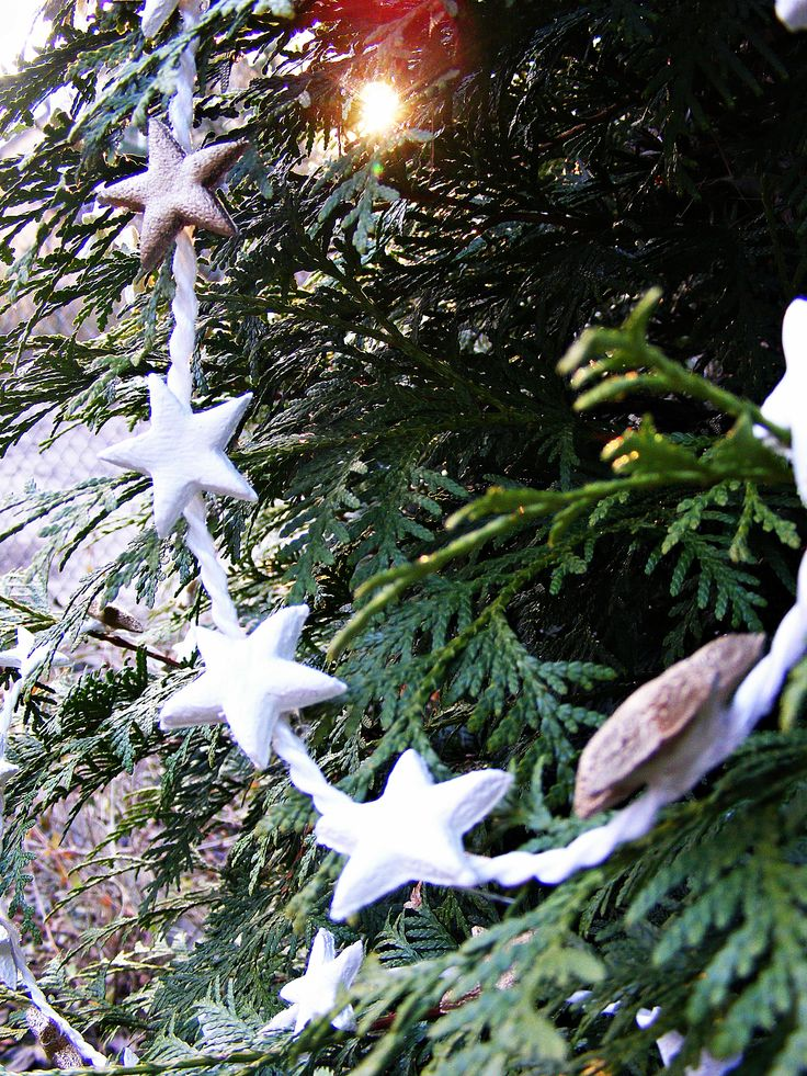 http://barbea.blogspot.com/2014/12/hello-december.html