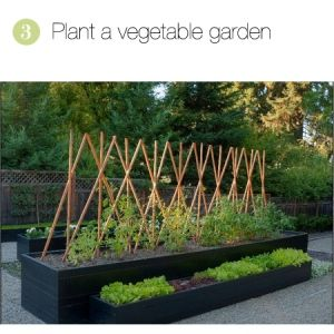 This is a cool & modern raised garden. I love the look! And it looks a little less back-breaking than a regular garden.