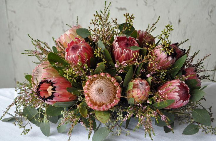 Welcome! Resendiz Brothers Protea Growers LLC was established in 1999 and is now one of California's largest supplier of South African and Australian floral products and plants. Over 200 varieties of these unique native plants are grown, harvested and shipped throughout the United States and Canada. Known for their exceptional value and long vase life, our products create a dramatic impact when placed in arrangements, bouquets or displays.