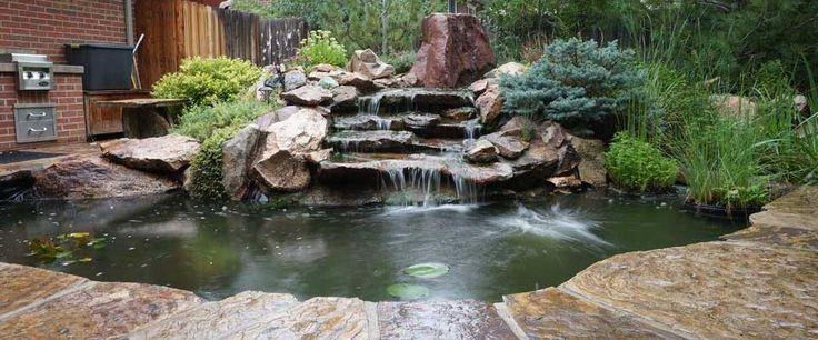 56 best diy koi pond construction video series images on for Koi pool water gardens thornton