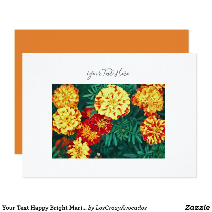 Your Text Happy Bright Marigold Flowers Invitation