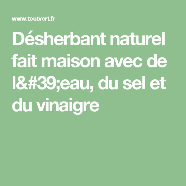 25 best ideas about d sherbants faits maison sur pinterest d sherbants d - Nettoyer son frigo avec du vinaigre blanc ...