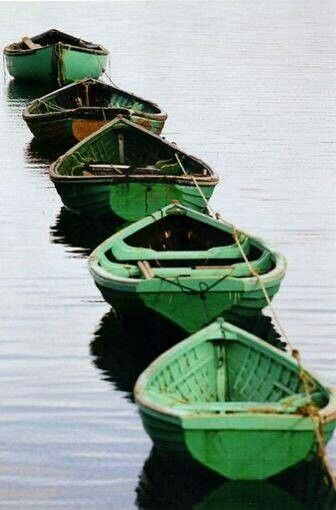 green boats tied in a row