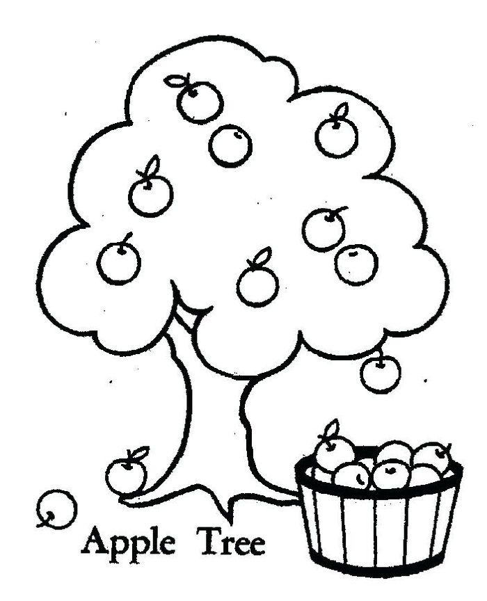 Apple Tree Coloring Pages Fruit Coloring Pages Apple Coloring Pages Preschool Coloring Pages
