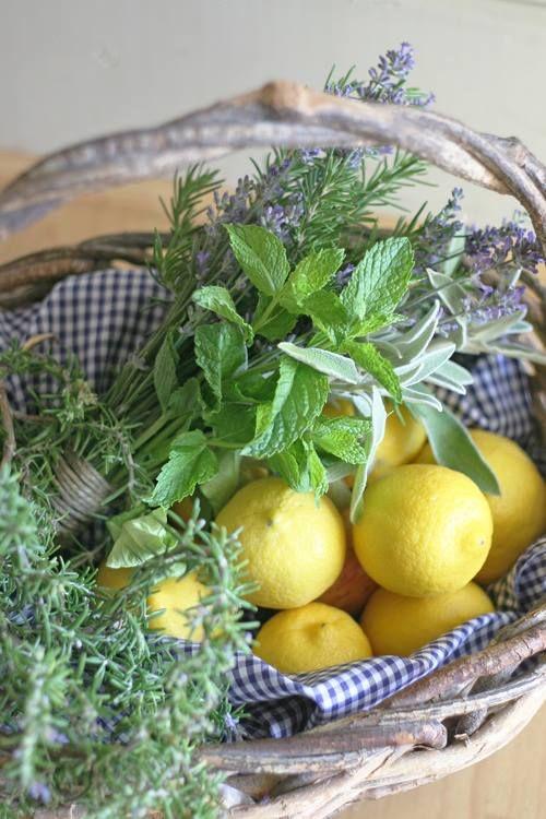 Lemons, mint and lavender