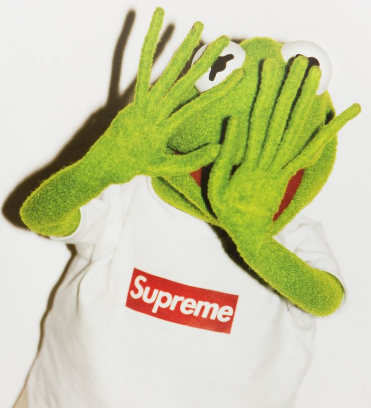 Supreme Kermit the Frog by Terry Richardson