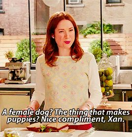 """You bitch!"" ""A female dog? The thing that makes puppies? Nice compliment!"" 