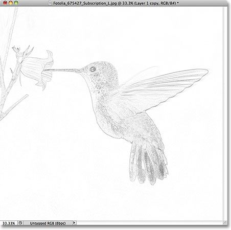 The photo has been converted into a sketch with the Minimum filter. Image © 2011 Photoshop Essentials.com.