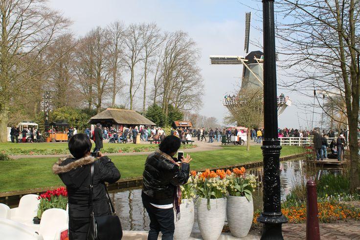 Het mooiste lente-uitzicht; die vind je in de Amsterdam Garden op Keukenhof!