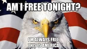 Funny patriotic pictures - free tonight - eagle - humor - Independence Day