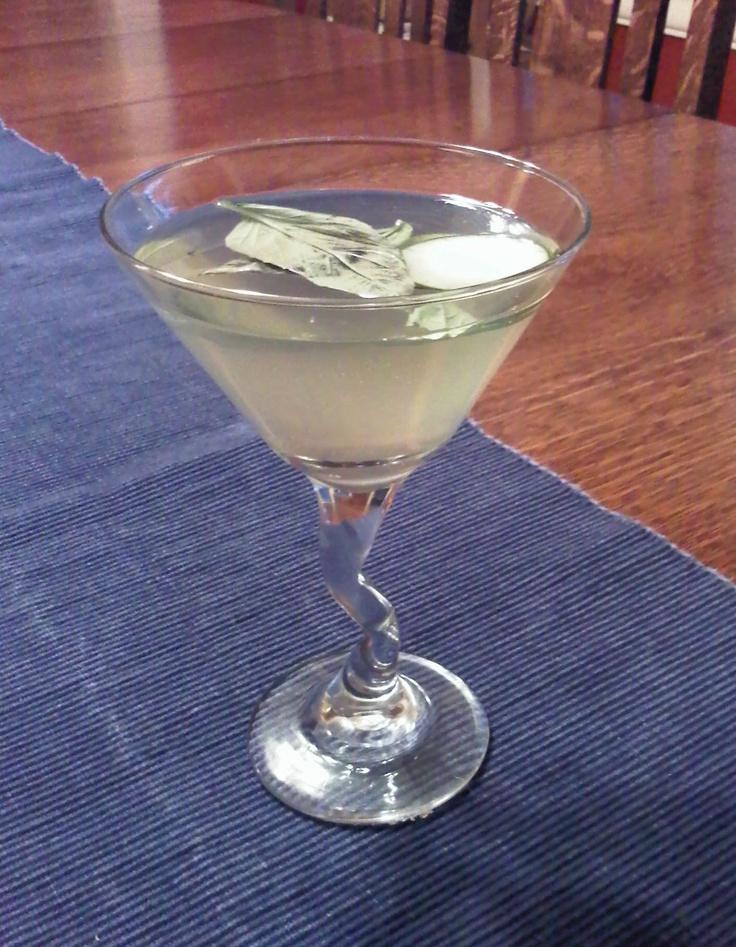 Cucumber Basil Gimlet: Cucumber, basil, 1.5 oz gin (works with vodka ...