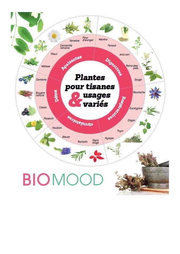 Infusion ou décoction , l'art de la tisane : • Pour les fleurs et feuilles tendres, c'est l'infusion. Versez de l'eau bouillante sur les plantes, couvrez le récipient et laissez infuser plus ou moins 10 minute. • Pour les graines, écorces et racines, utilisez la décoction. Plongez-les dans l'eau froide, faites bouillir 3 min et laisser infuser une dizaine de minutes.