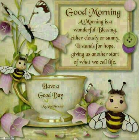 Good morning Quote,A morning is a wonderful blessing ...