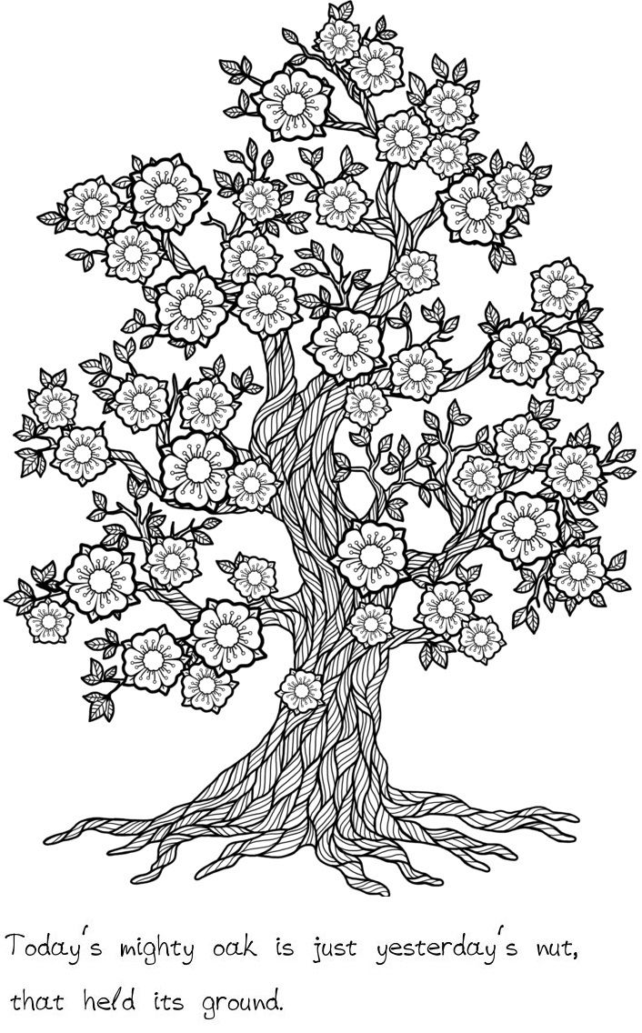 Trees Of Wisdom Coloring Book With Relaxing Trees To Color And