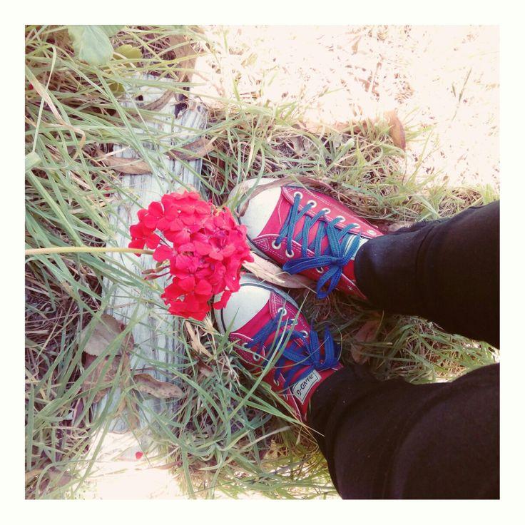 Flor roja+ zapatillas con cordones azules = me happy