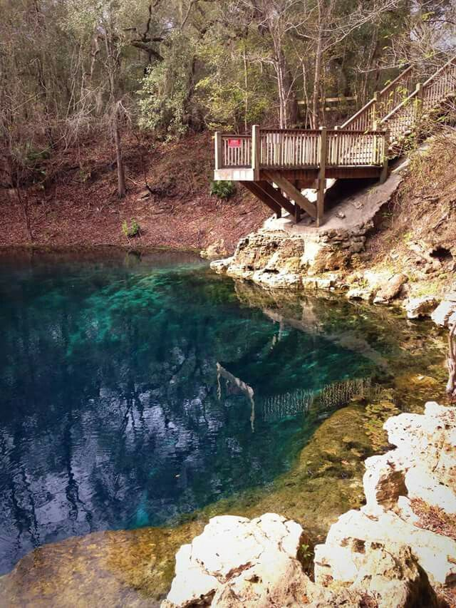"""""""Royal Beauty"""" View of Royal Springs and its jumping platform off the Suwannee River. One of my favorite places along the Suwannee near Brandford."""