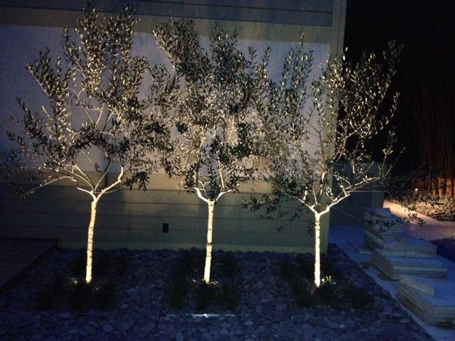24 best landscape lighting images on pinterest exterior lighting tampa outdoor lighting ideas outdoor lighting perspectives of clearwater and tampa bay aloadofball Gallery