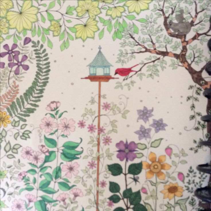 Johanna Basford Secret Garden Coloring Books Adult My Drawings Gardening Colour Gardens Vintage Color