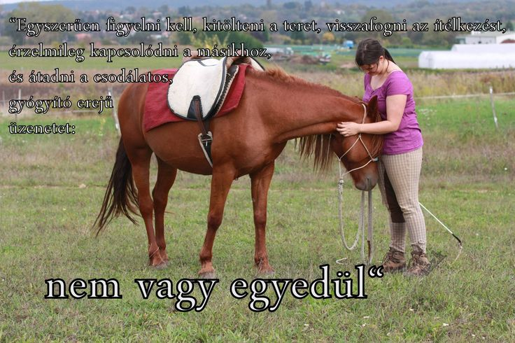Sziasztok!  Boldog Bálint napot minden Bálintnak és nem Bálintnak. Tulajdonképpen ez a nap arról is szólhatna, hogy kilépünk egy pillanatra a hétköznapokból, és a szeretteinkkel még jobban éreztetjük, milyen fontosak. Állj meg egy percre, fúrd bele az arcod a lovad szőrébe, és ne felejtsd el, miért is szerettél bele ebbe az egészbe. A lóval való foglalkozás akkor jó, ha örömötöket lelitek egymásban. Szeressétek a lovaitok, mert ha amíg ők vannak, sosem lesztek egyedül