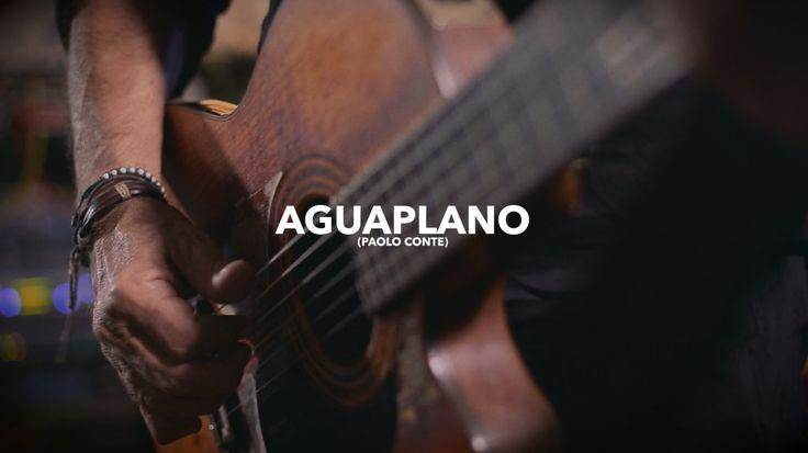 Fausto Mesolella - Aguaplano (Paolo Conte) | Studio Session