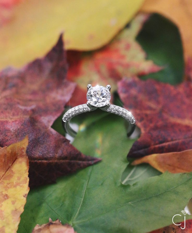 Engagement rings in Middleton, Wisconsin