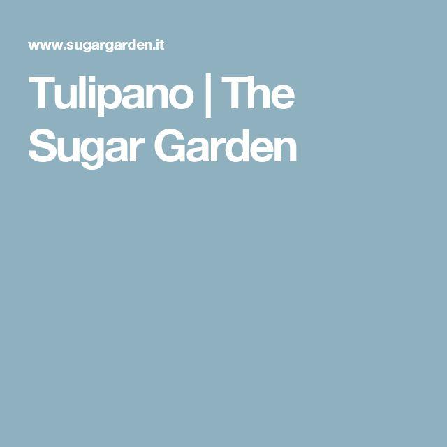 Tulipano | The Sugar Garden