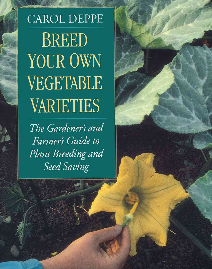 Breed Your Own Vegetable Varieties: The Gardener's & Farmer's Guide to Plant Breeding & Seed Saving