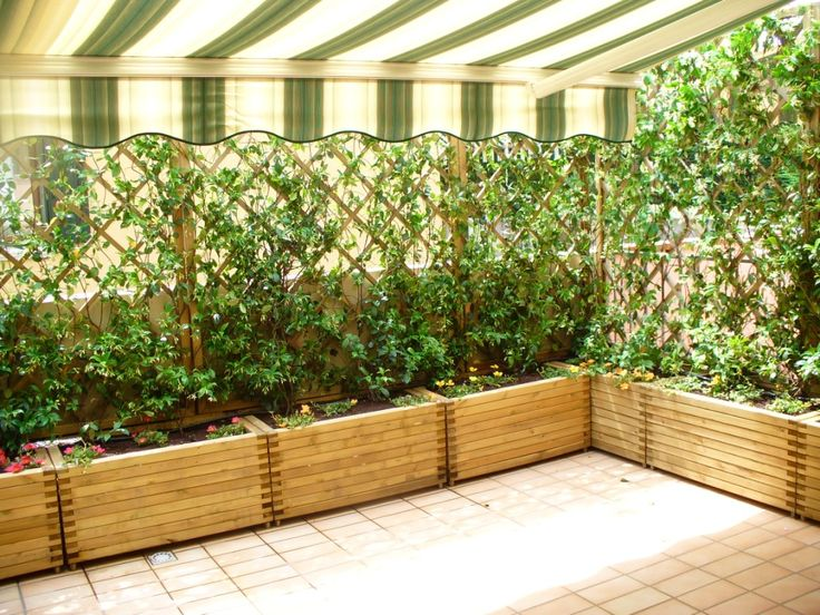 estos floreros con plantas trepadoras y flores decoran el mirador de madera en la terraza.