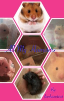 All About My Past Hamsters (Wattpad Hamster Book!)