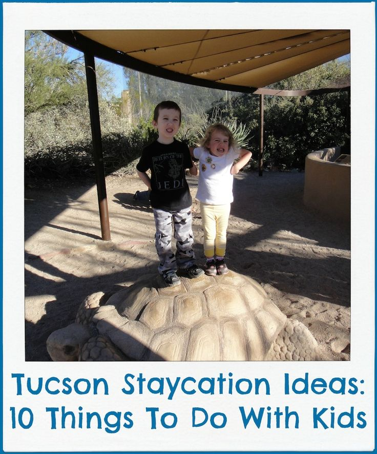 Best We Love Tucson Images On Pinterest Tucson Arizona - 10 things to see and do in tucson