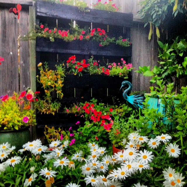 By beautiful pallet flower bed gardening pinterest for Flower beds out of pallets
