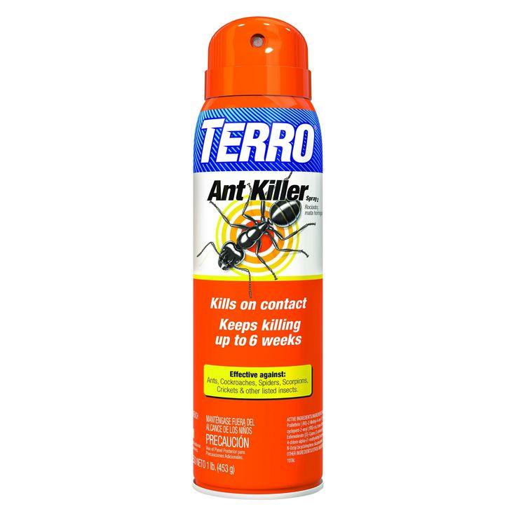 Ant Killer Spray - Terro, Insect Killer