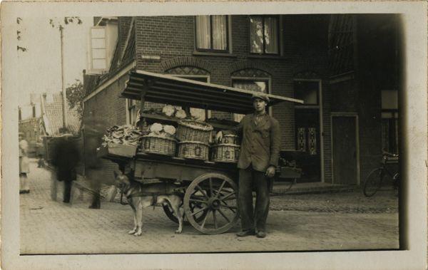 Noorder Havendijk - Venter met hondenkar
