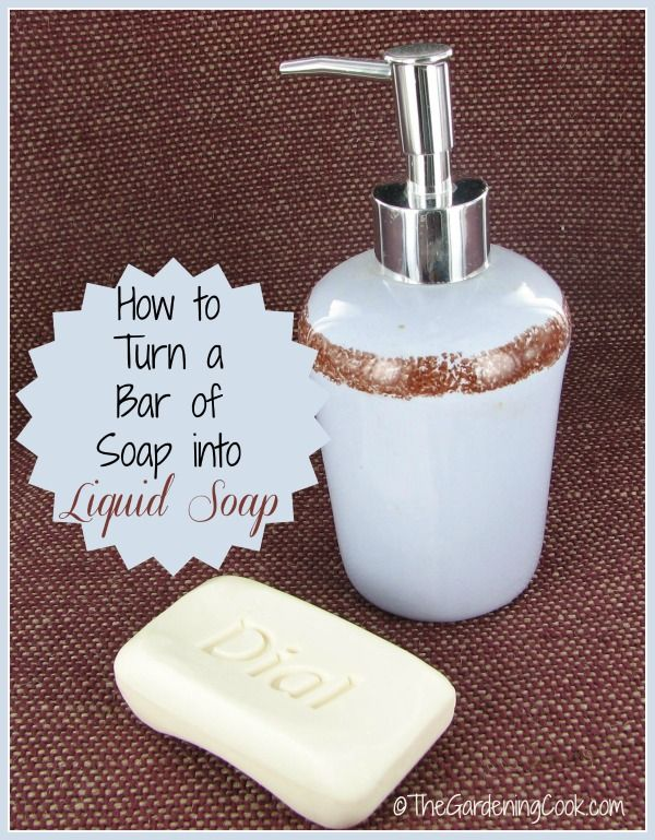 Make your own liquid soap from an ordinary bar of soap.  All you need are a few moire ingredients. See how: http://thegardeningcook.com/how-to-make-liquid-soap/