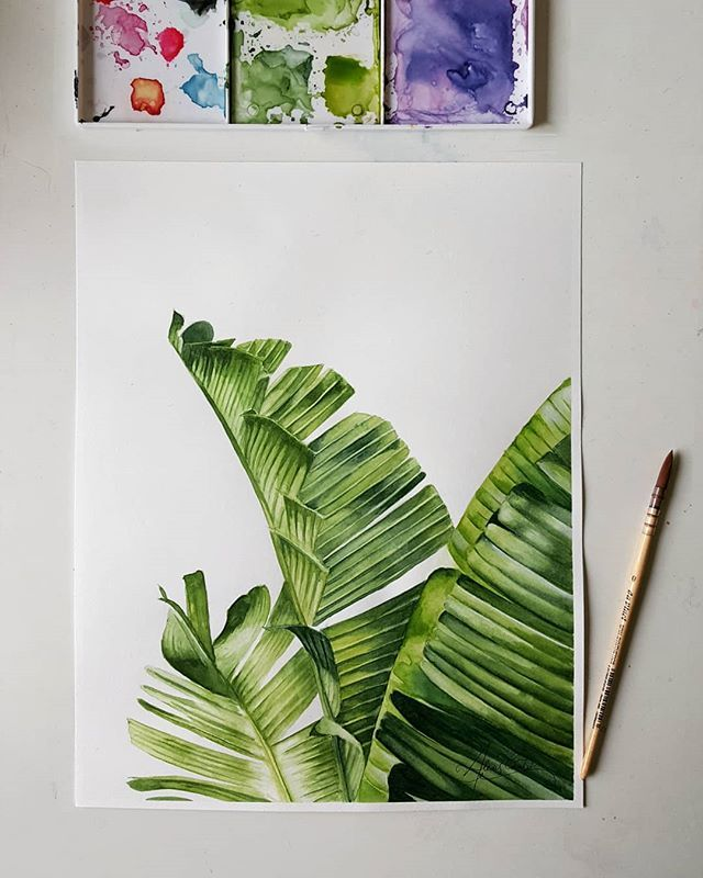 inished watercolor #botanical piece 😊 . . . . ….