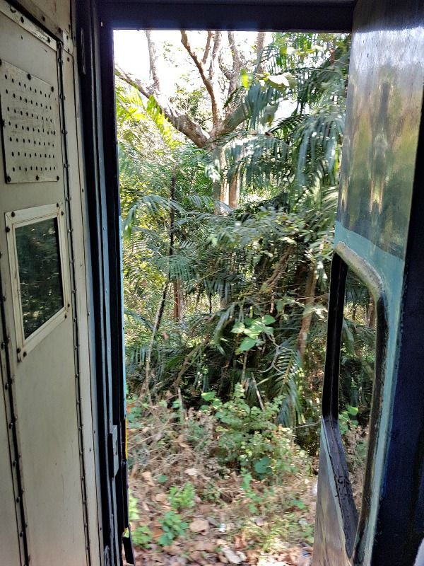 India train travel is a wonderful opportunity to meet the locals and make new friends. Here are things you need to know about catching a train in India. #travel #trains